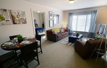Large, fully furnished apartments
